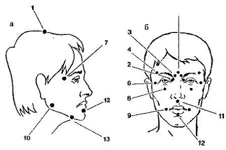 Основные точки воздействия точечного массажа