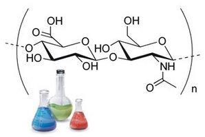 Высокомолекулярная и низкомолекулярная гиалуроновая кислота