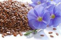 Cемена льна для очищения кишечника: достойная альтернатива медицинским препаратам